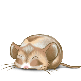 Adoptuj Mysz Nugat
