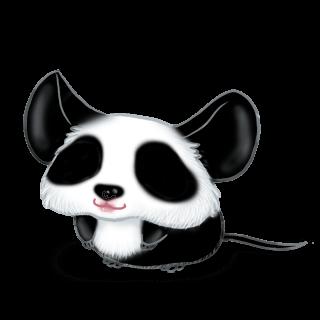 Adoptuj Mysz Panda
