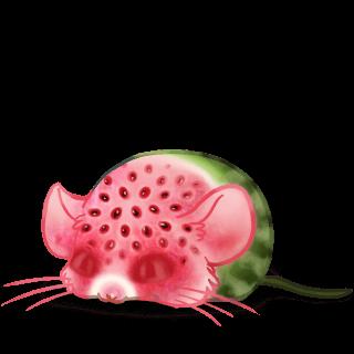 Adoptuj Mysz Arbuz