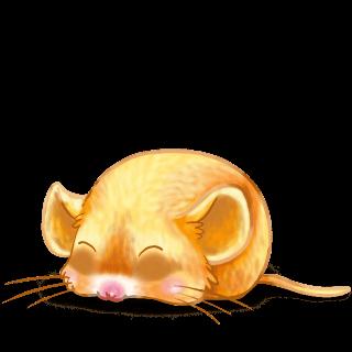 Adoptuj Mysz Pisklę