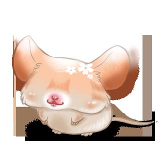 Adoptuj Mysz Wiosna