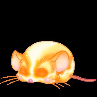 Adoptuj Mysz Klasyczna morela