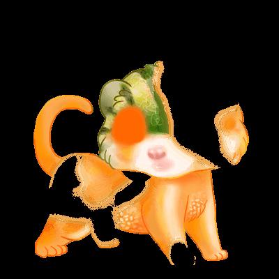 Adoptuj Fretka Irisor