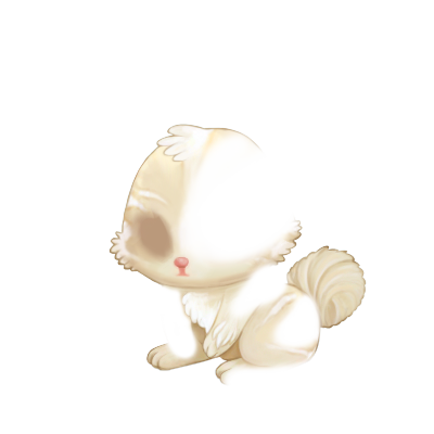 Adoptuj Królik Blond