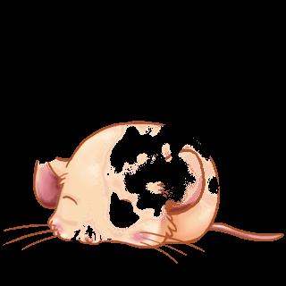 Adoptuj Mysz Beżowy