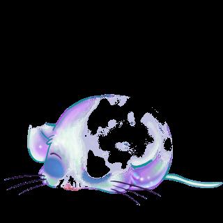 Adoptuj Mysz Pistacji