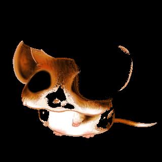 Adoptuj Mysz Cappuccino