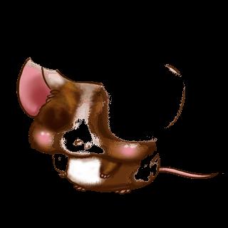 Adoptuj Mysz Gospodarstwo domowe