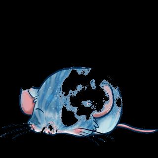Adoptuj Mysz Spadać