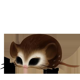 Adoptuj Mysz Krem