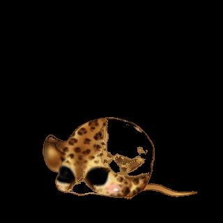 Adoptuj Mysz Miękkość