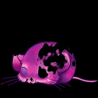 Adoptuj Mysz Amanita