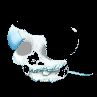 Mysz Arc-en-Ciel