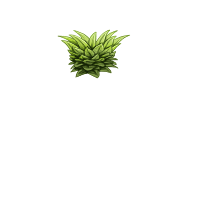 Adoptuj Królik Ananas