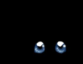 Adoptuj Chomik Niebieski szary